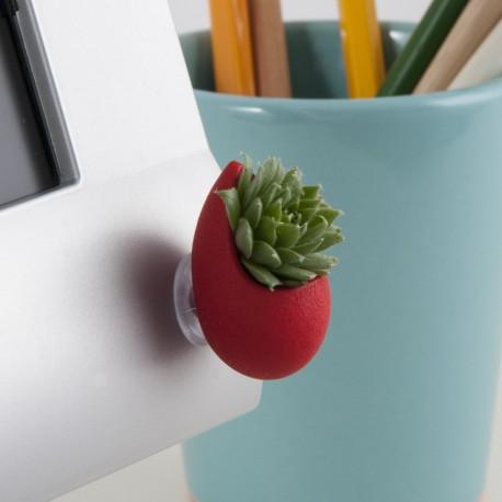 Bijou pour odinateur Goutte rouge avec plante