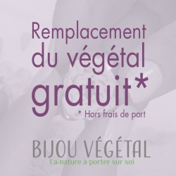 Remplacement gratuit du végétal