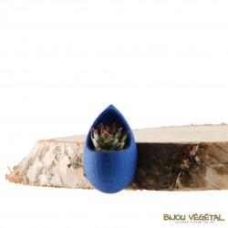 Broche Goutte Bleu avec plante