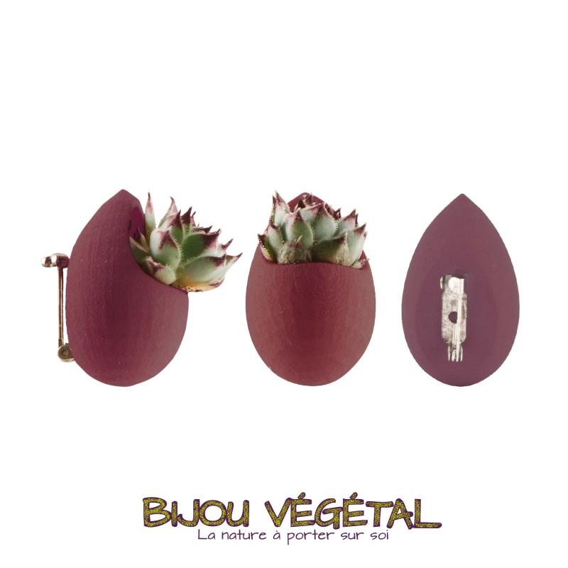 broche prune avec plante vivante pour veste. Black Bedroom Furniture Sets. Home Design Ideas