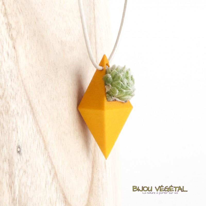 collier cuir et pendentif orange avec un v g tal permanent. Black Bedroom Furniture Sets. Home Design Ideas