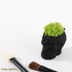 """Broche """"Tête de mort"""" noire avec du lichen permanent"""