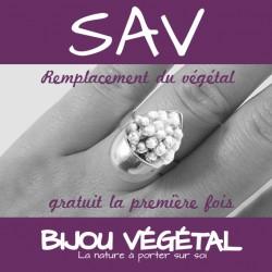 SAV Remplacement gratuit du végétal