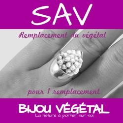 S.A.V. avec 1 remplacement végétal